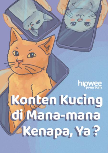 Konten Kucing Selalu Meluluhkan Hati di Dunia Maya. Kok Bisa Ya Manusia Tergila-gila?