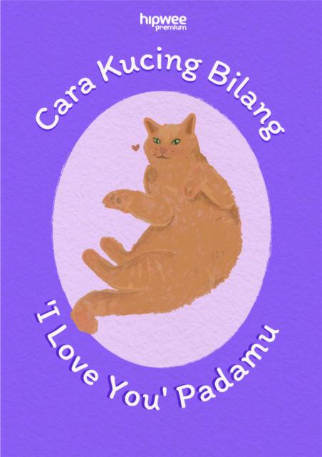 Gestur Kucing yang Berarti 'I Love You'. Tandanya Dia Sayang Kamu