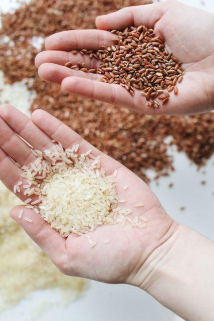 Perbedaan beras merah dan beras putih untuk diet
